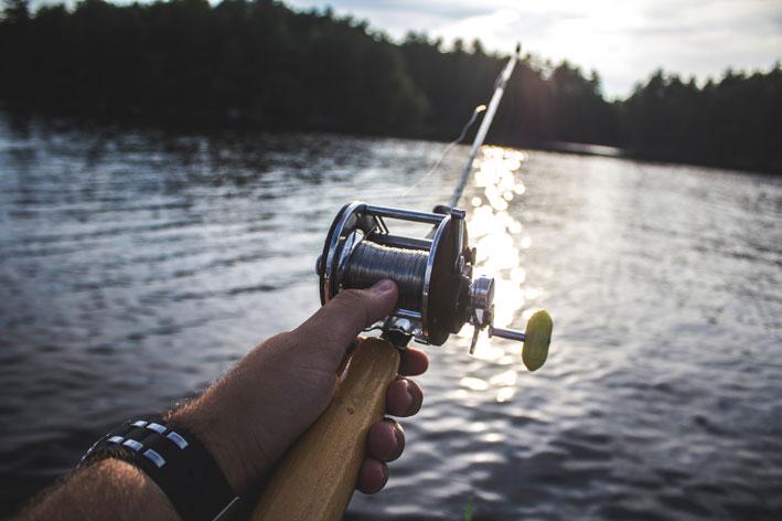 An die dicken Fische rankommen